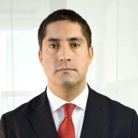 Rodrigo Sanhueza web