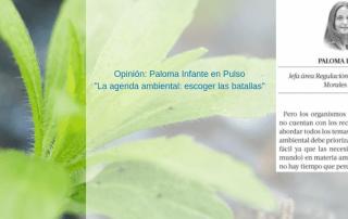 Copia de PIM Columna Pulso web