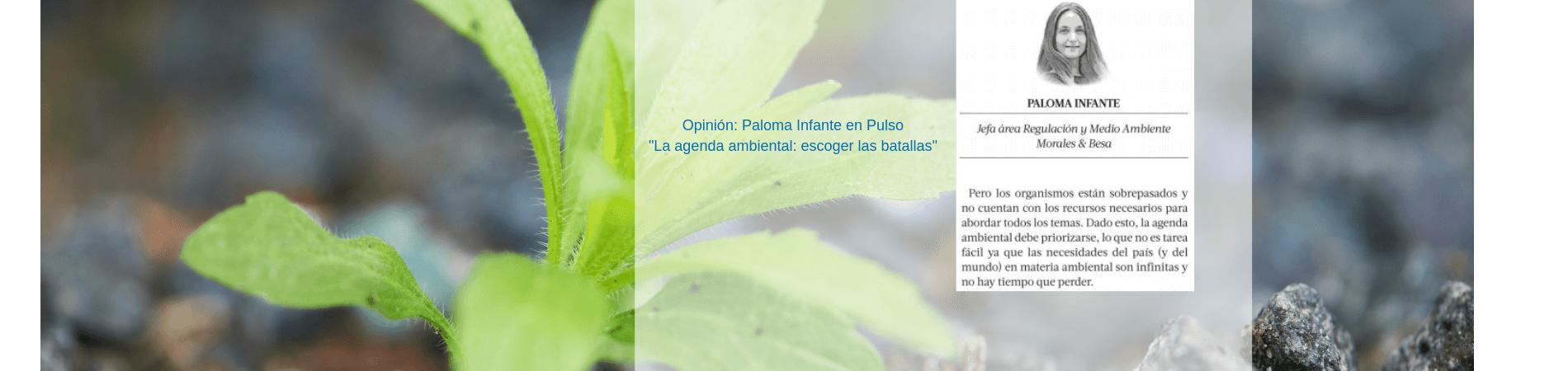 """Opinión: Paloma Infante en Pulso con """"La agenda ambiental: escoger las batallas"""""""
